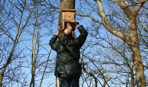 Donderdag 2 april zijn de eerste negen kasten door Jan Boshamer in het bos van Eendenkooi 't Zand vervangen.