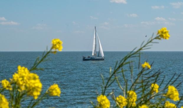 <p>Ruimte zoeken op het IJsselmeer. Zijn straks nog wel grote zeilwedstrijden mogelijk op het IJsselmeer, zoals de 24 Uurs?</p>