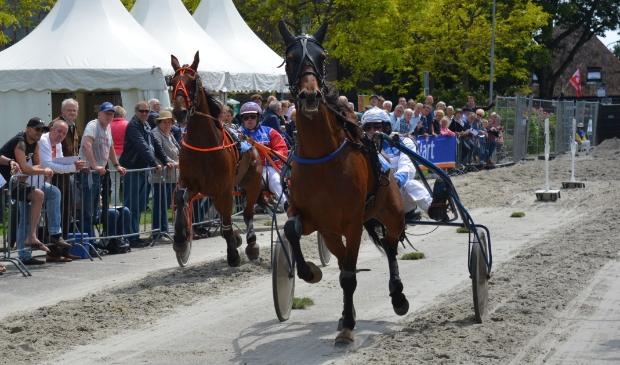 Online paardenkoers zondag 31 mei in plaats van kortebaan Venhuizen.