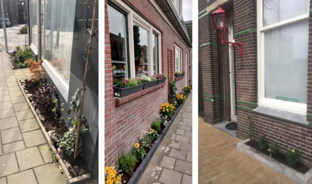 Voorbeelden van mini-tuintjes.