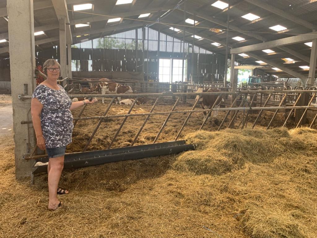 Linda Rodenburg geeft een rondleiding door de stallen.  Foto: Yvette van der Does/RM © rodi