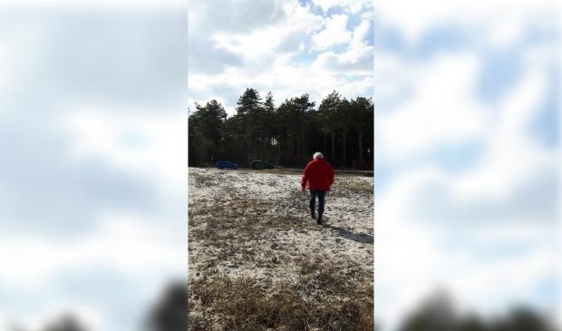 Jacob Vis op de kale vlakte na de bomenkap, voor hem is nog een rijtje zwarte dennen gespaard gebleven.