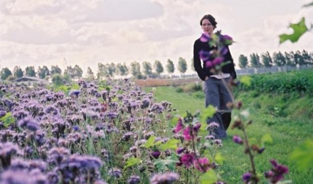 Het coulisselandschap op het platteland wordt in stand gehouden door gemotiveerde agrariërs.