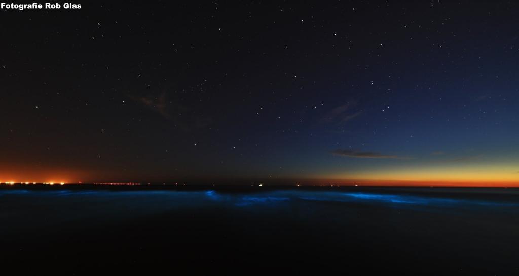Bij warm weer en in ondiep water kan zeevonk ontstaan (Foto: Rob Glas) © rodi