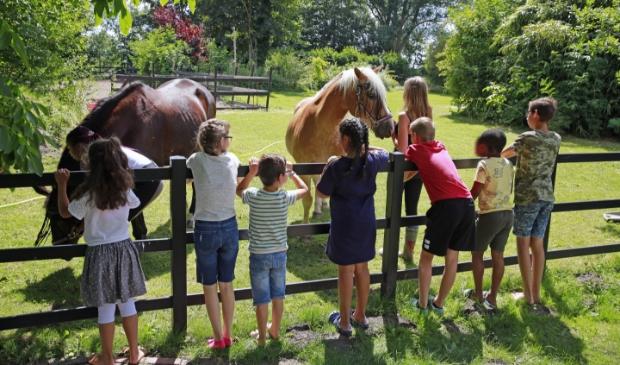 De kinderen hebben veel interactie met de paarden op de woonboerderij.
