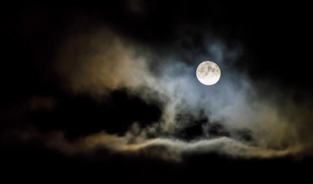 Ga met de gidsen van Staatsbosbeheer en Metius mee op pad voor een nachtelijke wandeling bij volle maan