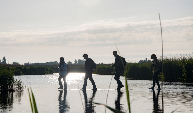 Het Guisveld kent vele geheimen, zoals wandelen over water...