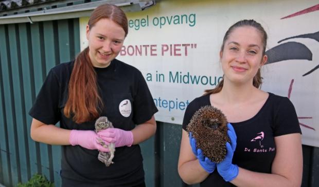 Vrijwilliger zijn bij De Bonte Piet is leuk en geeft veel voldoening.
