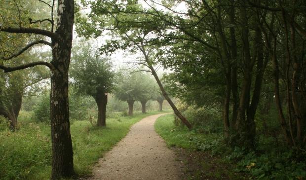 <p>Het Vijfhoekpark, groene oase in Zaandam Zuid.</p>