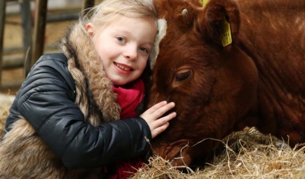 <p>Kinderen houden van dieren.</p>