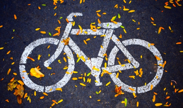 <p>Niemand in Bergen, behalve het gemeentebestuur, wil dit volstrekt overbodige en schadelijke tweede fietspad</p>