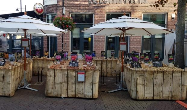 <p>Zondag 4 oktober staan bloembollen centraal bij Hortus Alkmaar.</p>