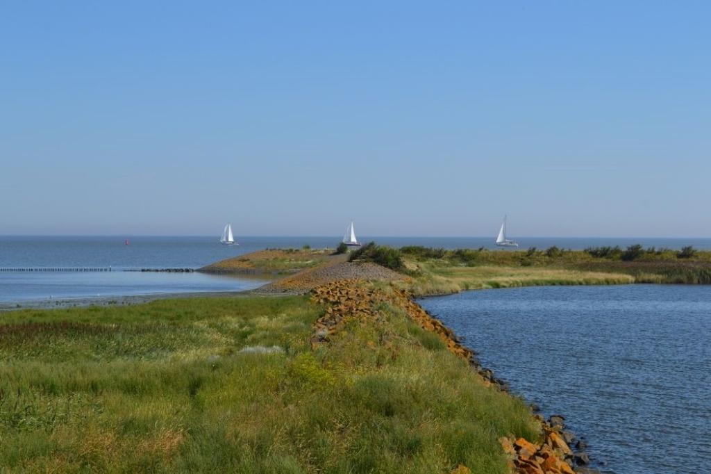 <p>Waddenzee vanuit Den Oever.</p> ((Foto: aangeleverd)) © rodi