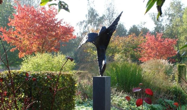 <p>Bezoek de tuinen- en kunstroute in Kop van Noord-Holland</p>