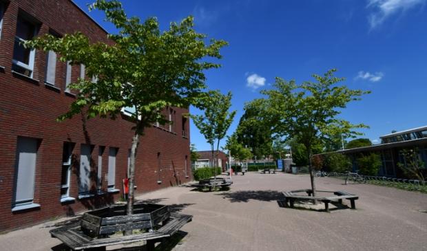 <p>Jonge aanplant tussen de scholen in Westerkoog.</p> (Foto: Dirk Karten) © rodi