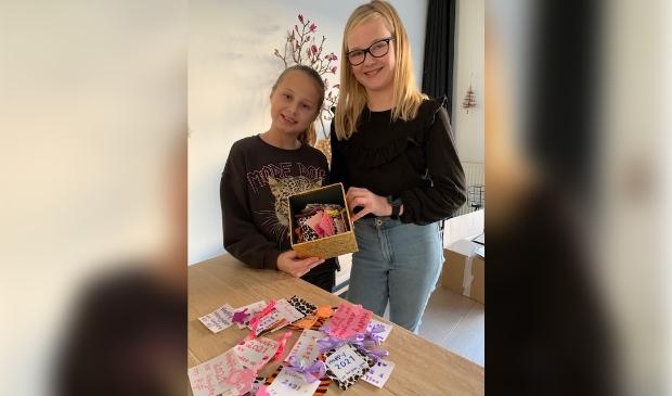 <p>Pip van den Boogaard (10 jaar) en Kaylee van den Poel (11 jaar) uit Assendelft deden wat de regering aan ons vraagt: omzien naar elkaar.&nbsp;</p>