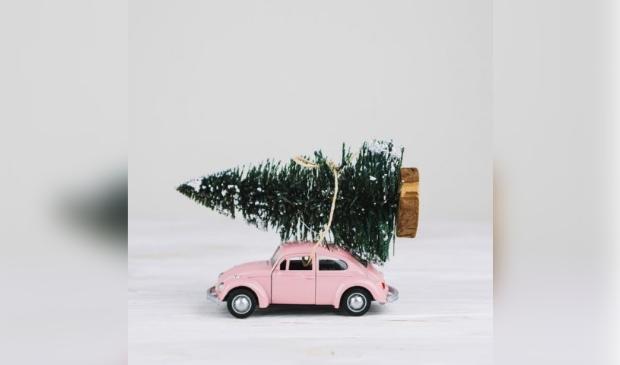 <p>Kerstbomen ophalen in Waterland gebeurt op 7 januari.</p>