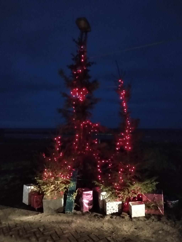 <p>Kerstpark in vijf dagen uit de grond gestampt.</p>  © rodi