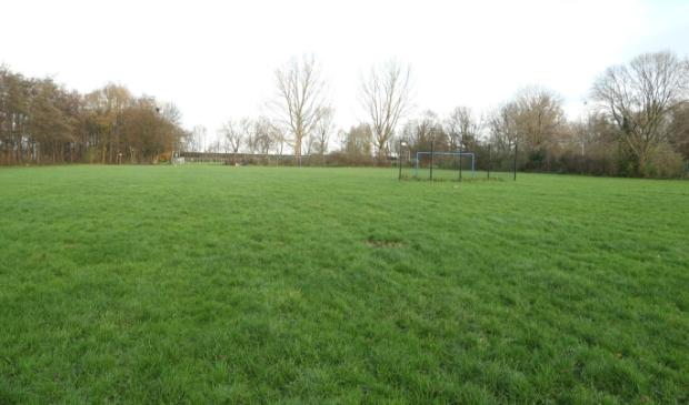 <p>Het grote openbare veld dat onder andere gebruikt om te voetballen.</p>