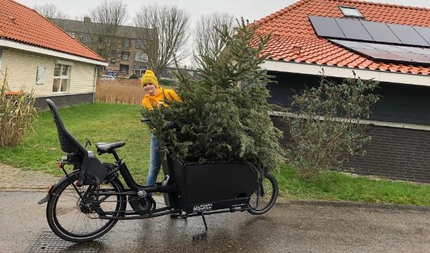 <p>Opgehaalde kerstbomen doen ook weer een duit in het zakje.</p>