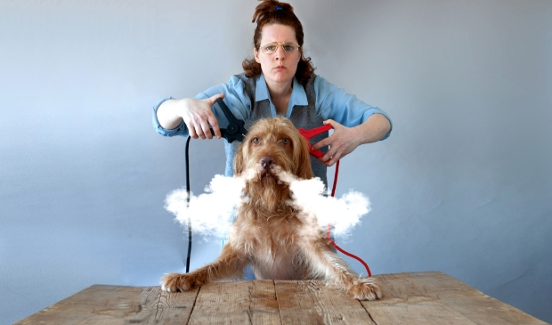 <p>&lsquo;De hond die licht gaf&rsquo; is een muzikale griezelvoorstelling die laat zien dat de dood bij het leven hoort en niet eng is. </p>
