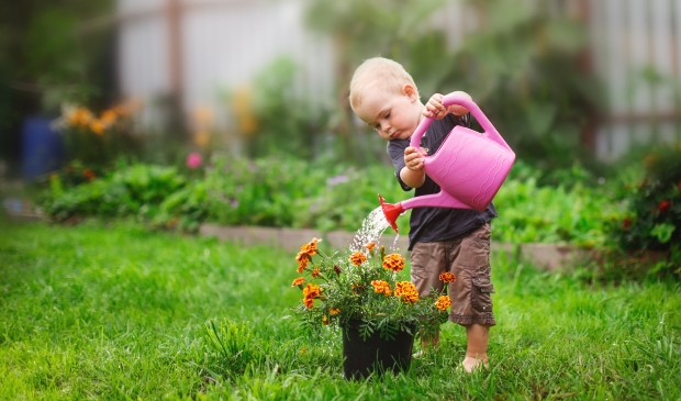 Verduurzaam de tuin!  (Foto: Adobe Stock) © rodi