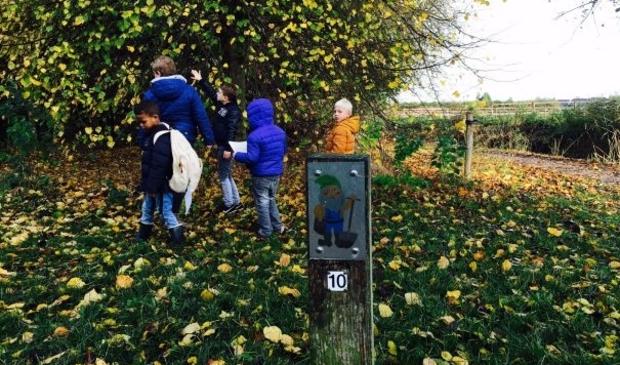 <p>Maak in het Boezelbos bij MAK Blokweer een struintocht en geniet van de herfstkleuren.</p>