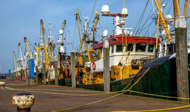 <p>De vissersvloot in Den Oever heeft te maken met hoge kosten door de boomkorsvisserij en hogere brandstofprijzen.</p>