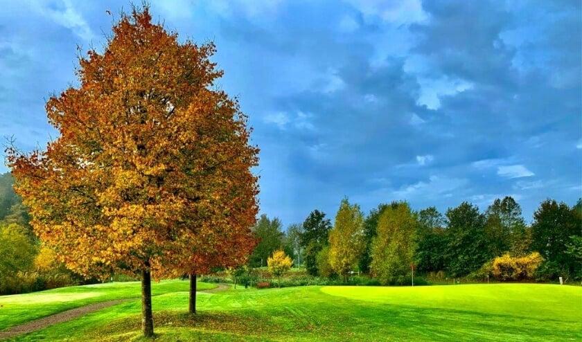 De golfcourse van De Lage Mors is leuk, uitdagend en ligt direct naast Aparthotel Delden.