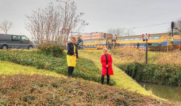 <p>Wethouder Annette Groot en Klazien Hartog, portefeuillehouder stedelijk water, gaan samen op zoek naar oplossingen.</p>
