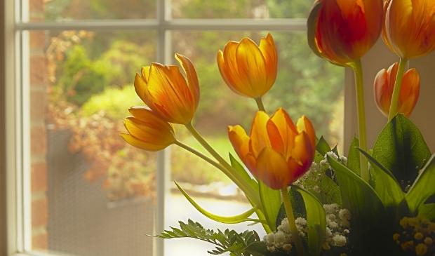 <p>Laat iedereen meegenieten van de lente.</p>