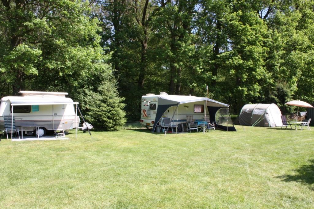 De camping bevindt zich in een bosrijke omgeving. (Foto: Aangeleverd) © rodi