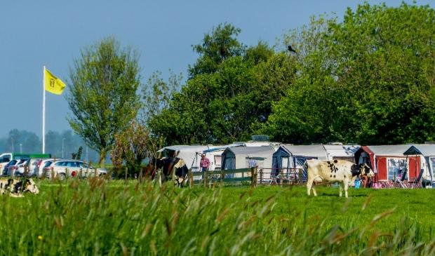 <p>Landelijk kamperen steeds populairder zoals hier bij Camping de Kei in Castricum.</p>