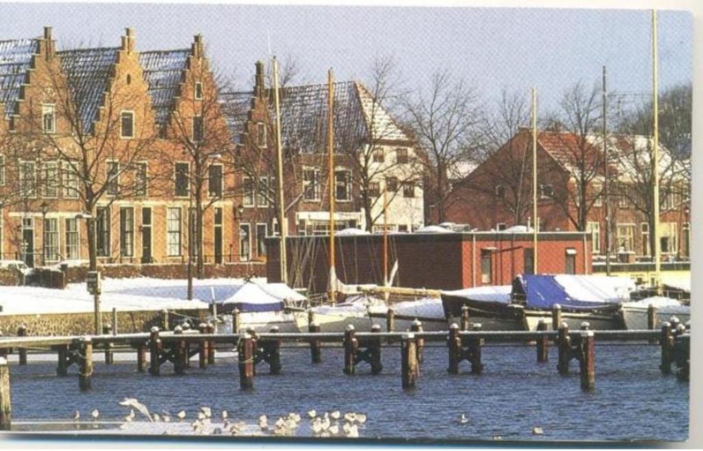 De Westerhaven heeft vele gezichten. ((Foto: aangeleverd)) © rodi