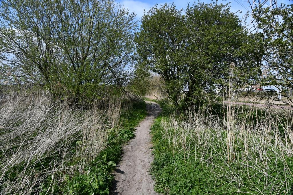 <p>Struinpaden nodige uit tot avontuurlijk wandelen.</p> <p>(Foto: Dirk Karten)</p> © rodi