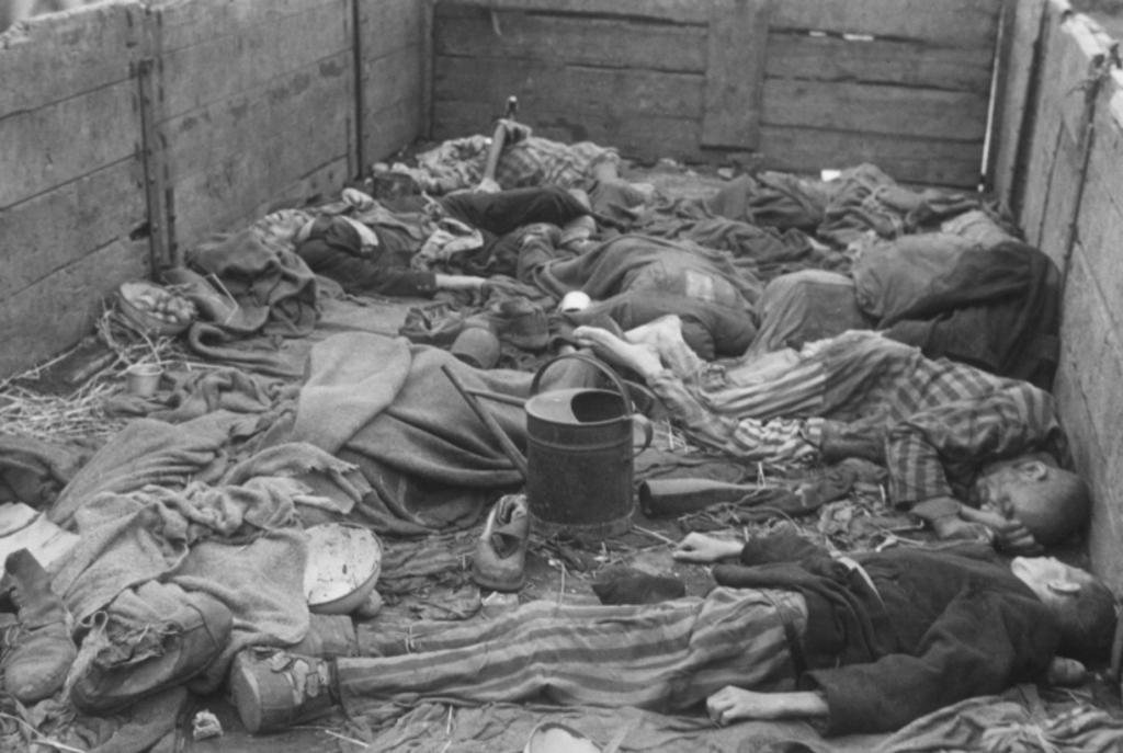Doden in Dachau (Foto: Aangeleverd) © rodi