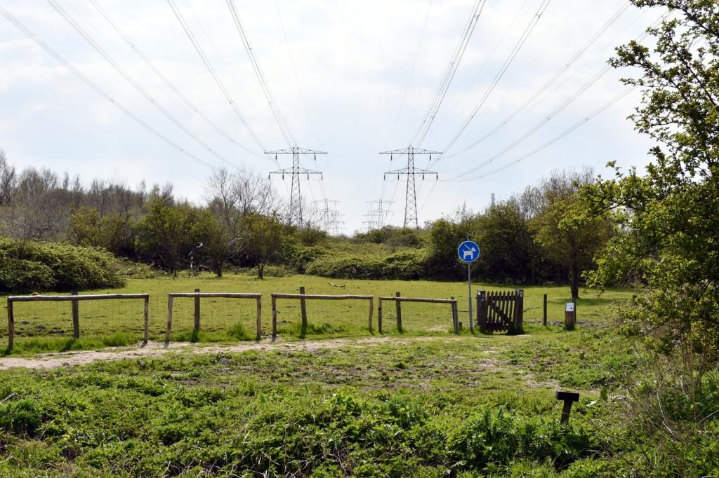 <p>Onder de hoogspanningsmasten zou ooit chemisch afval zijn gedumpt.</p> <p>(Foto: Dirk Karten)</p> © rodi
