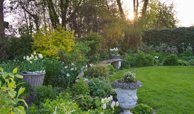 <p>De tuin van een van de deelnemers staat &nbsp;tijdens De Groene Route in de bloei.</p>