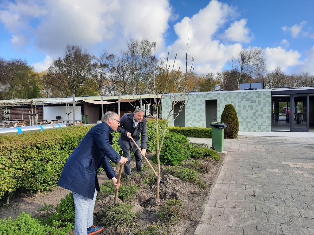 De nieuw geplante boompjes staan voor de volgende generatie. ((Foto: Ed Bausch)) © rodi