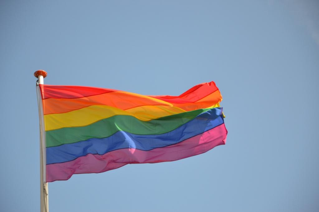De Regenboogvlag is gewoon een uiting zoals de Ajaxvlag.  © rodi