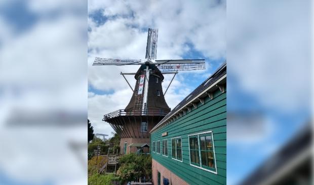 <p>Het Kuiperijmuseum, naast de molen van Sloten, is verhuurd.</p>