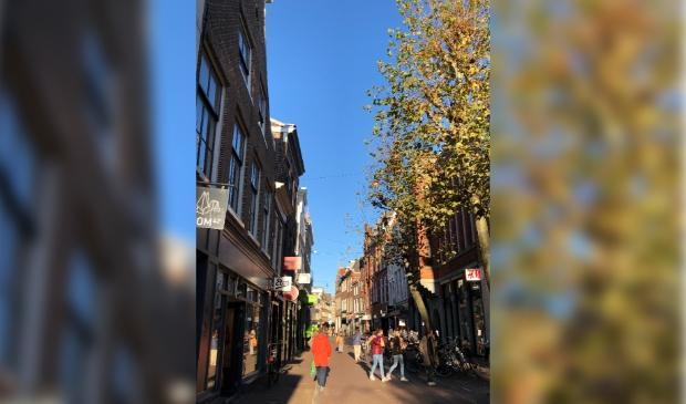 Het aantal Haarlemmers is tussen 2019 en 2020 flink gegroeid.