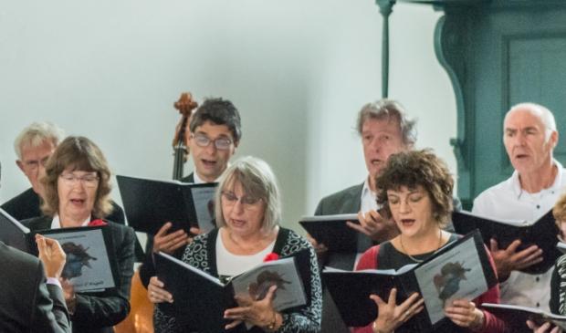 <p>Het Voci d&#39;Angeli koor toen er nog samen gezongen werd.&nbsp;</p>