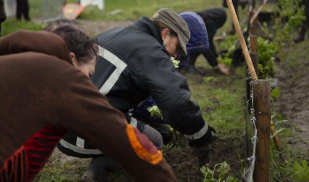 <p>Ruim 250 mensen hielpen mee met tuinieren.</p>