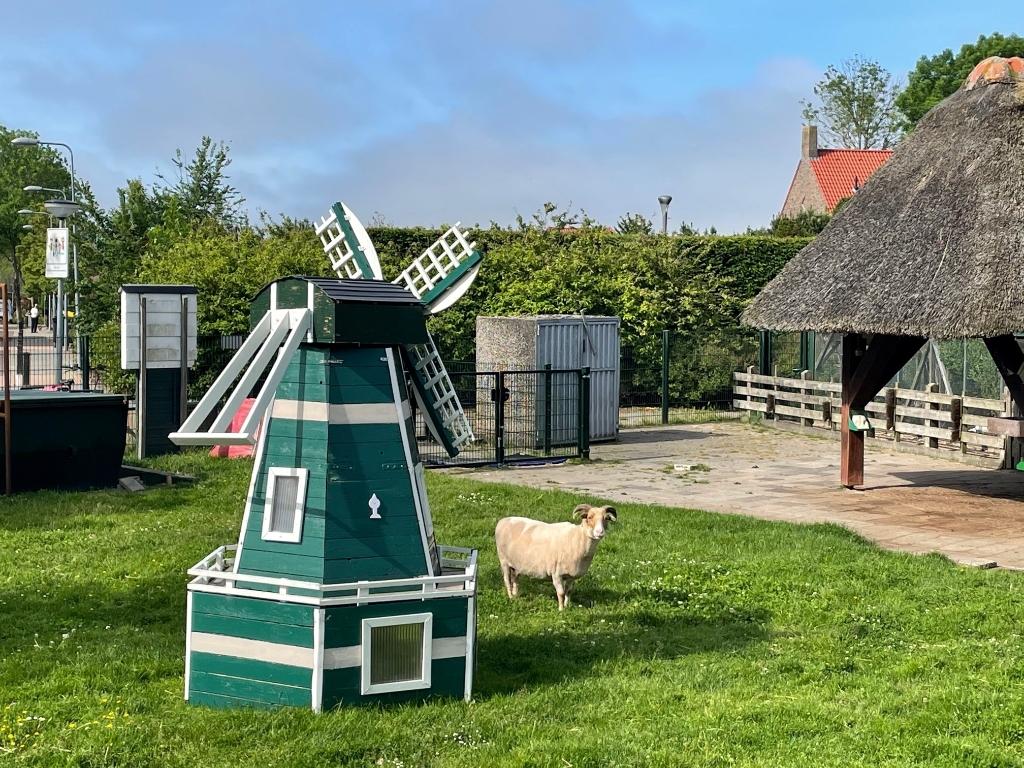 Kinderboerderij De Regenmortel is rustpunt in het dorp. (Foto: JB/RM) © rodi