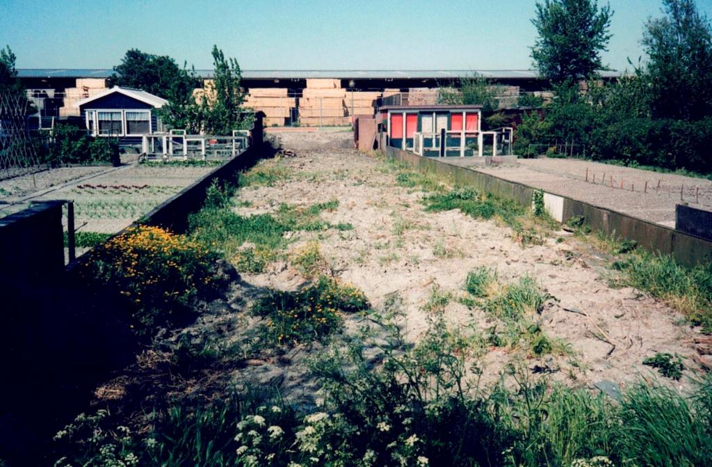 Zo zag de tuin van Herman en Anneke eruit toen ze hem 25 jaar geleden betrokken. (Foto: aangeleverd) © rodi