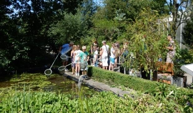 <p>Eerdere editie van Beestjesdag in Hortus Alkmaar. </p>