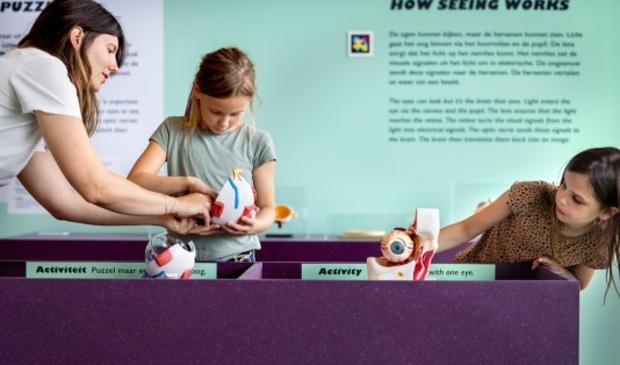 <p>Nieuw in NEMO Science Museum: de familietentoonstelling Zo te Zien. </p>