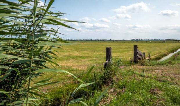 Ook dit gebied in gemeente Castricum, pal naast de A9 hoort tot de Amsterdam Wetlands.