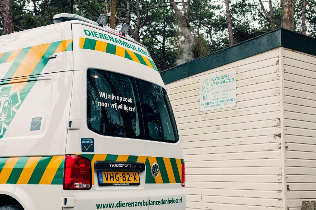 Dierenambulance Den Helder op zoek naar vrijwilligers. (Foto: Willem Verstraten) © rodi